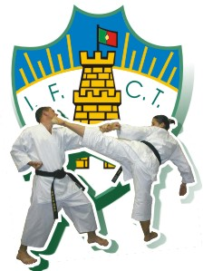 icon_ifct_karate